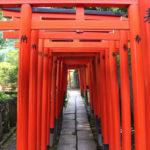 仕事に疲れたら根津神社の千本鳥居をくぐってみよう。ちょっと元気でるかもよ