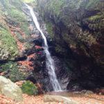 秋の御岳山でハイキング!パワースポットが豊富で紅葉も楽しめました