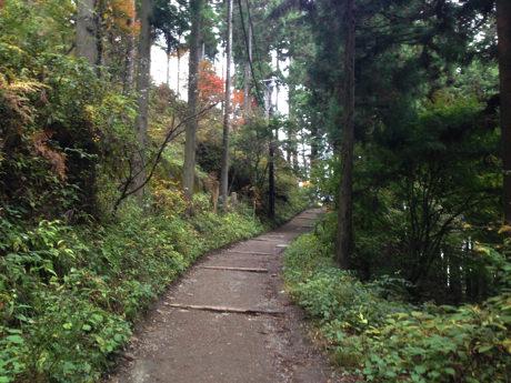 長尾平への山道