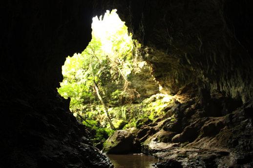 西表島 鍾乳洞1