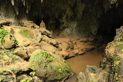 西表島 鍾乳洞2