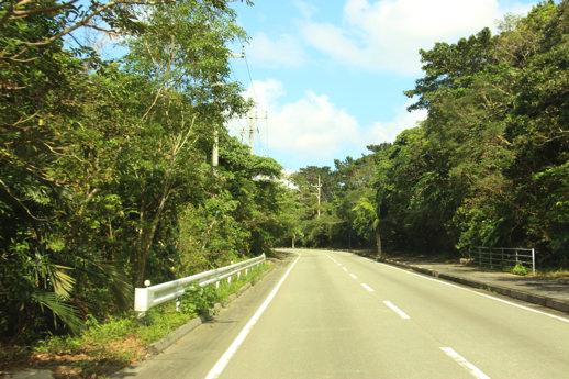 西表島 道路