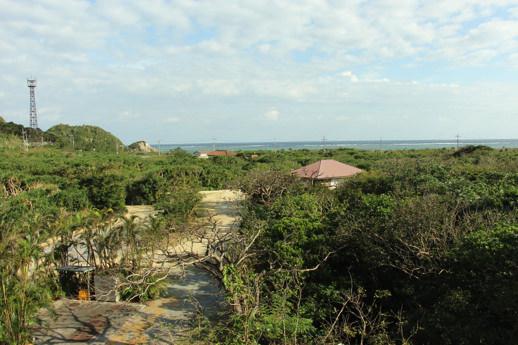 パイヌマヤ-屋上庭園2