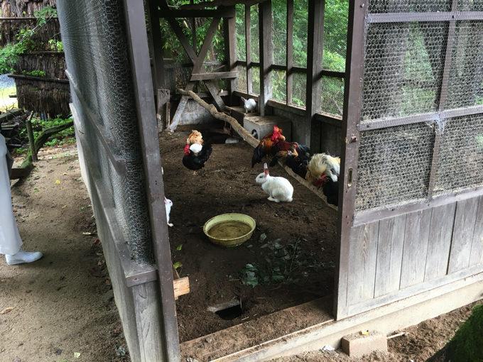 みたき園の飼育小屋